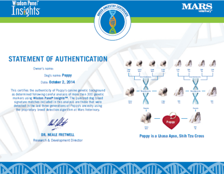 poppy dna certificate