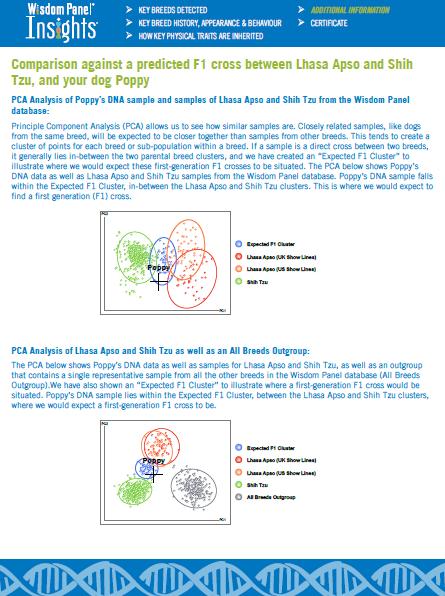 Poppys results - PCA